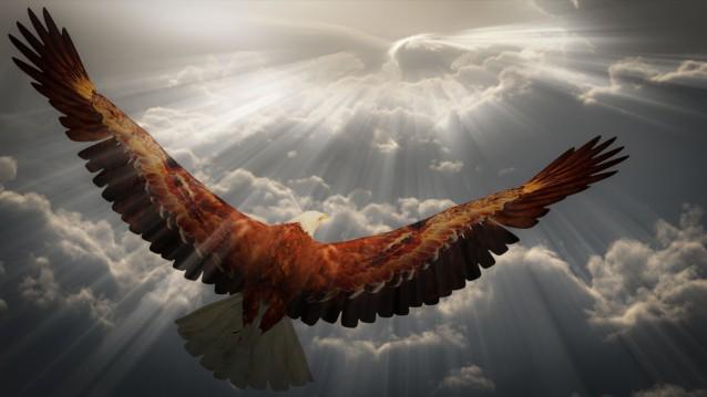 florida-baptist-church-belleview-sermon-fly-like-an-eagle
