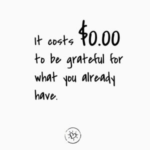 It costs zero dollars to be grateful for what you already have.