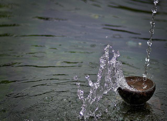 water bowl overflow