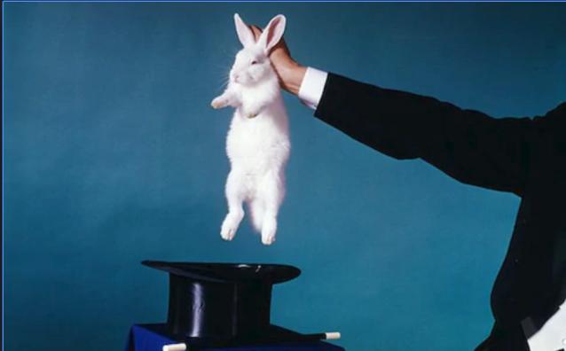 magic rabbit.PNG