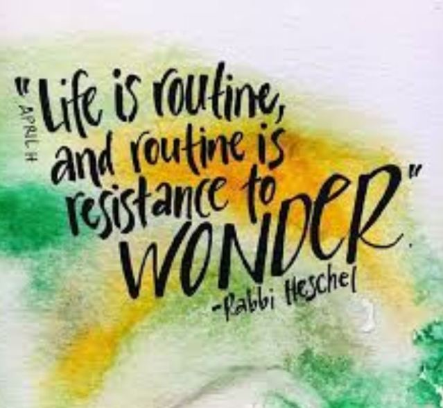 routine is resistance to wonder